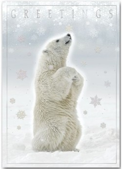 H13654 Polar Bear Holiday Card personalized with your business or personal information at no additional chaqrge