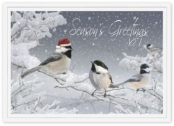 H14649 Red-Capped Chickadee Holiday Card pessonalized with your business or personal information